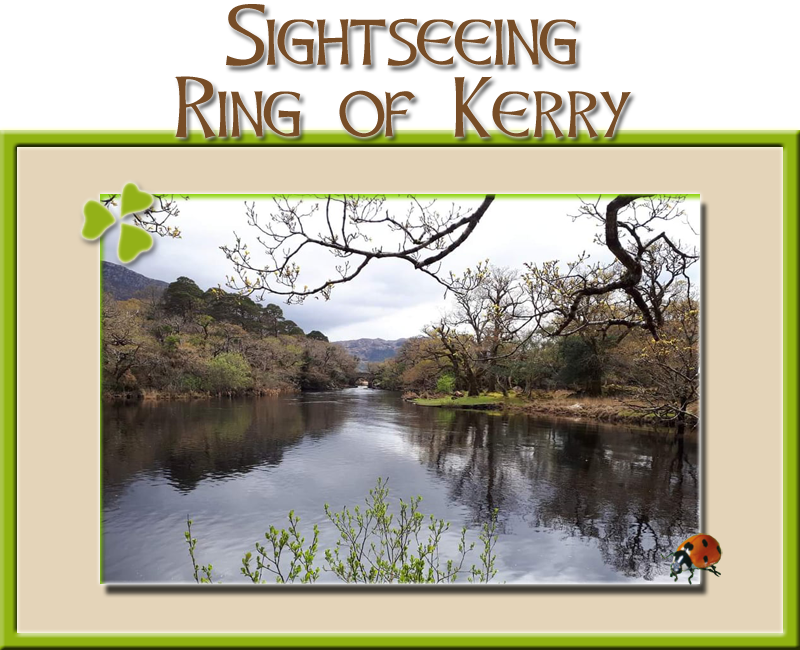 web_reisen_irland_sightseeing_ring_of_kerry_HAUPT